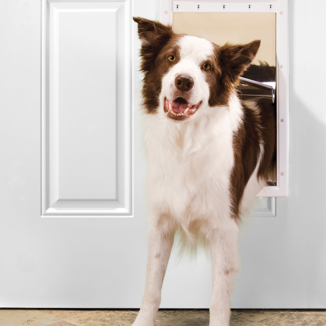 Plastic Pet Door Large Premier Pet