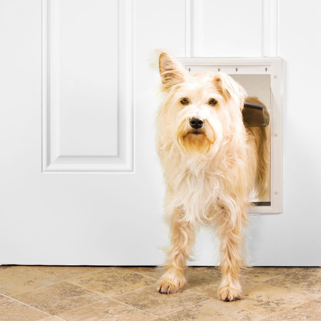 Plastic Pet Door Medium Premier Pet